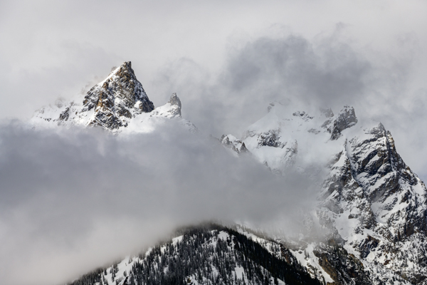Cloudy Morning, Grand Teton