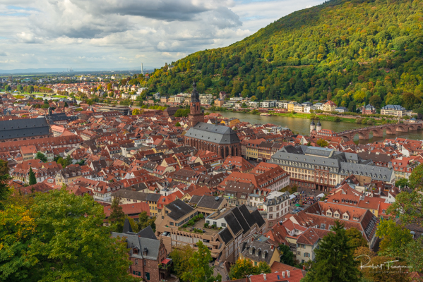 Altstadt Heidelberg as Seen from the Castle